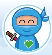 Internet Recruiting Ninja